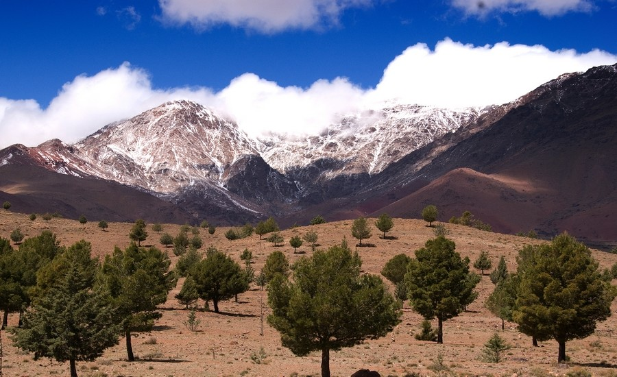 High Atlas morocco